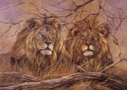 RGS Puzzle Brothers of the Savannah 1500 pieces